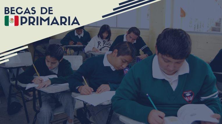 Cuáles son las becas para primaria en México
